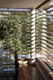 bambu_06.jpg
